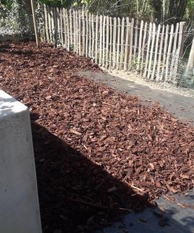 Tuinaanleg en onderhoud Wim Van Mullem - Aanplantingen